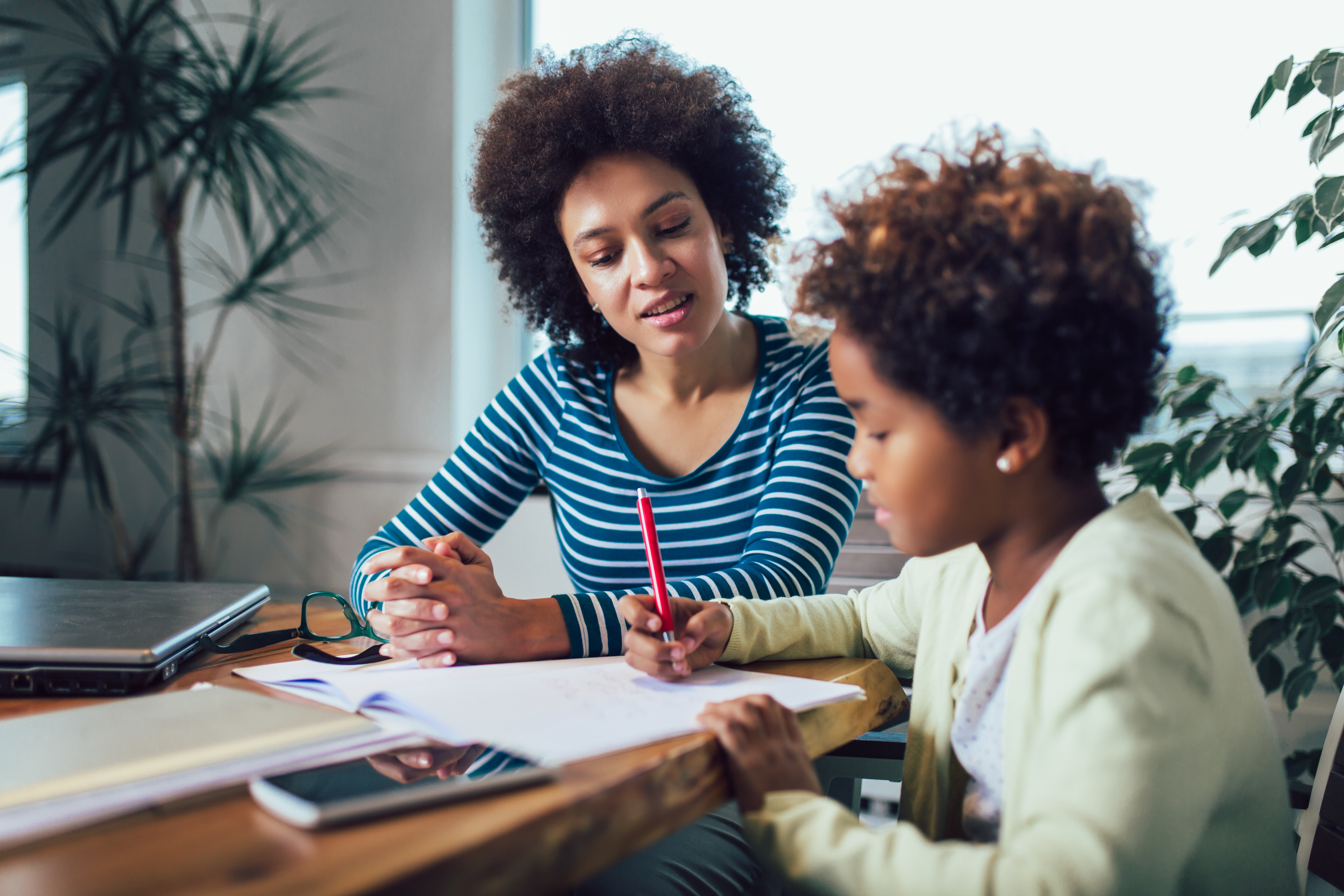Homeschooling and home learning environment