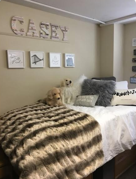 decorating your dorm room with fur and petsies