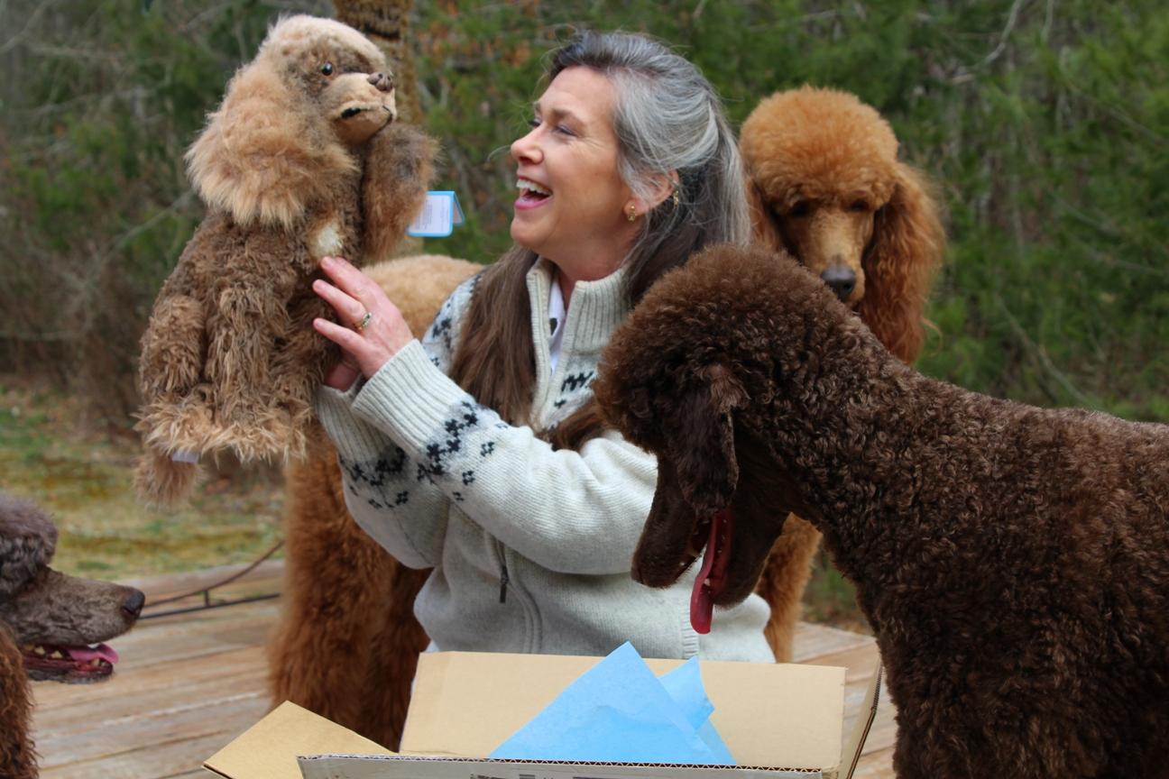 Petsies custom stuffed animal