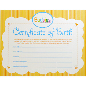 birth certificate for Budsies stuffed animals