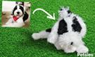 Custom stuffed animal from dog photo