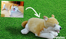 Dog stuffed animal from picture
