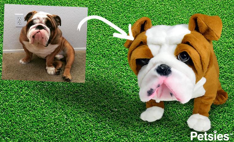 Turn dog into a stuffed animal